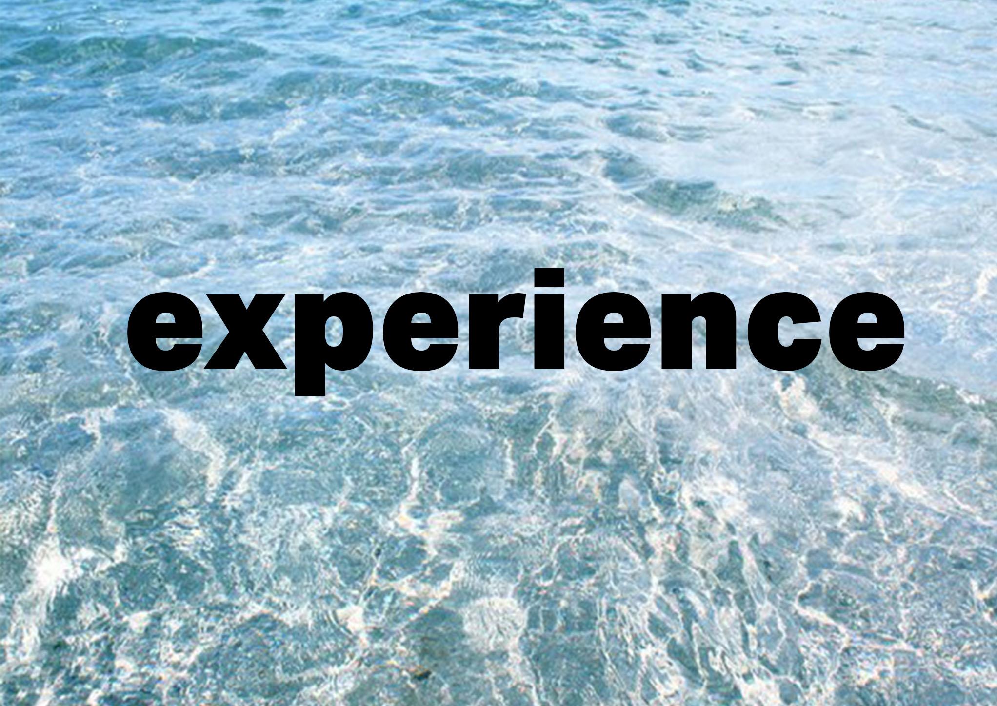EXPERIENCE WELL DAMN.jpg