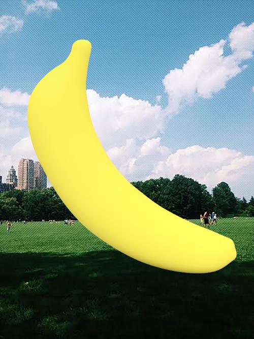 central_park_banana_500px_web.png