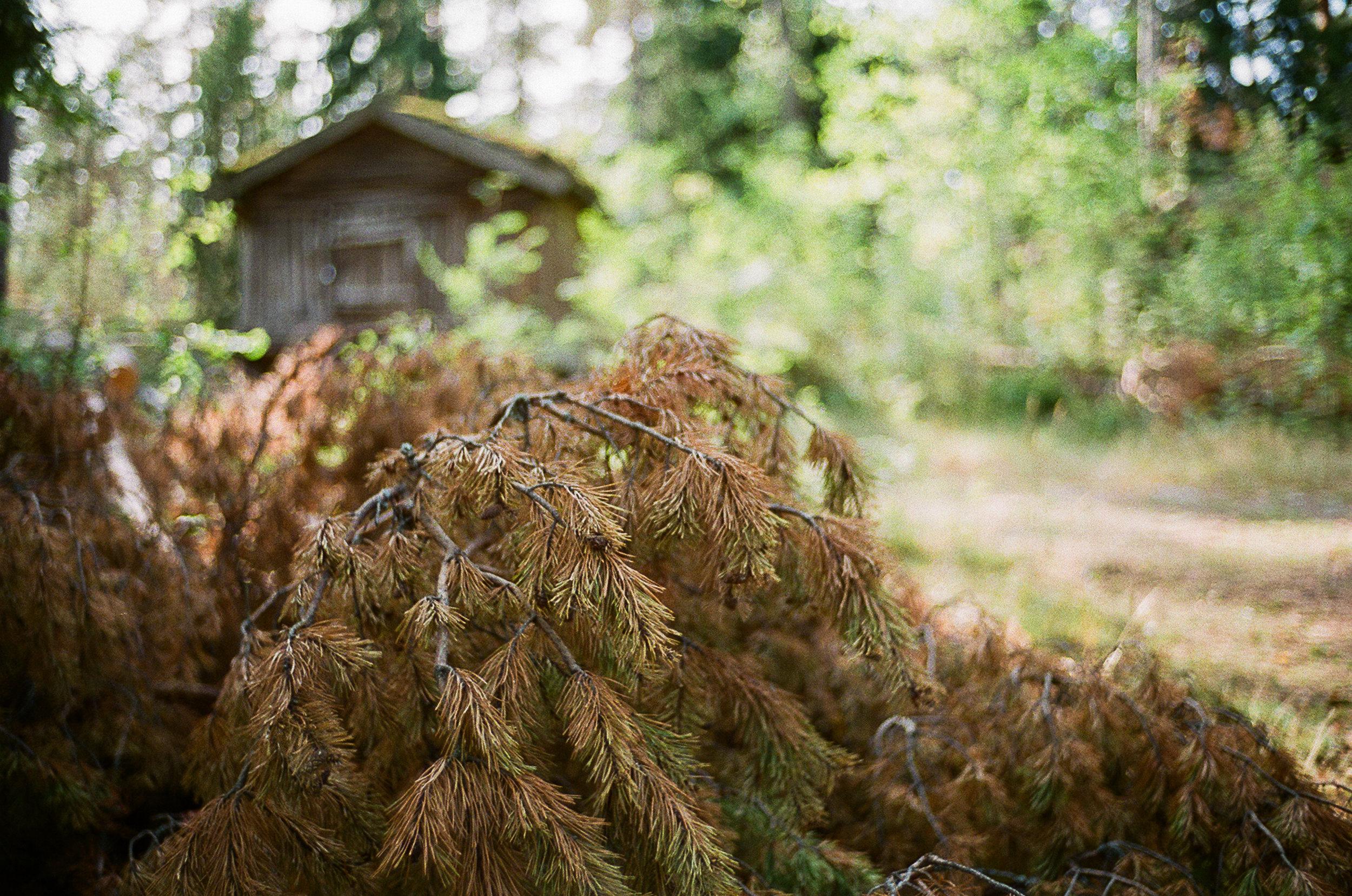 Shot via Voigtlander 35mm F1.4 on my Leica M6