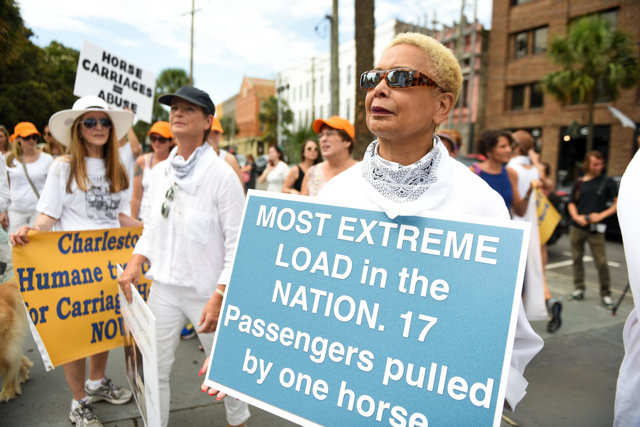 Take Action: - Stay informed on what's happening and become an advocate in the community. Since February 2016 alone, there have been over 54 carriage-related incidents. Charleston's carriage animals need your voice. Click on the button below to help take action! Below are also links to find & follow us on Facebook, Twitter and Instagram.