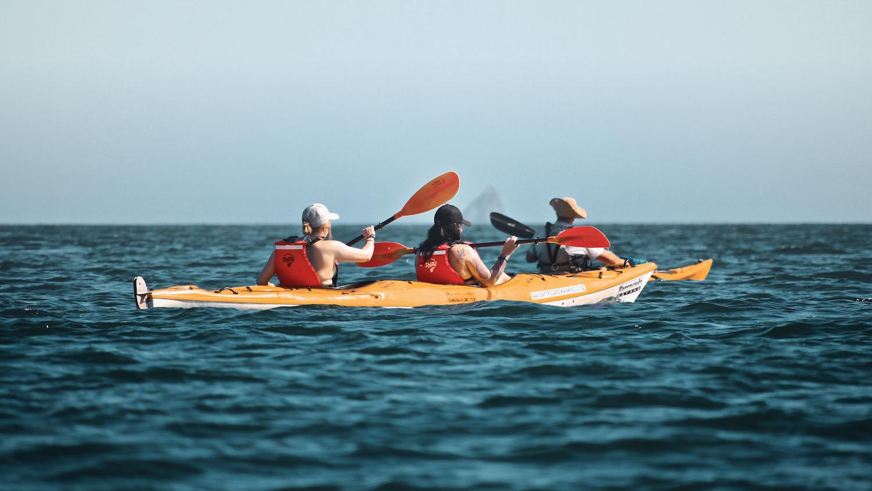 Kayaking Bay of Islands - Paihia - NZ