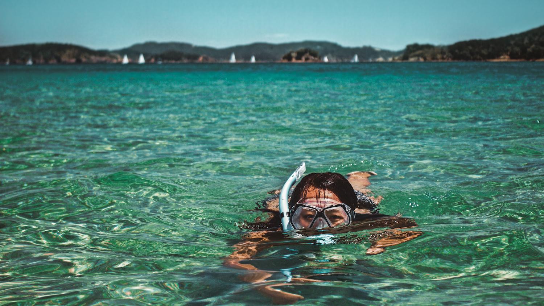 Snorkelling Bay of Islands - Paihia - NZ