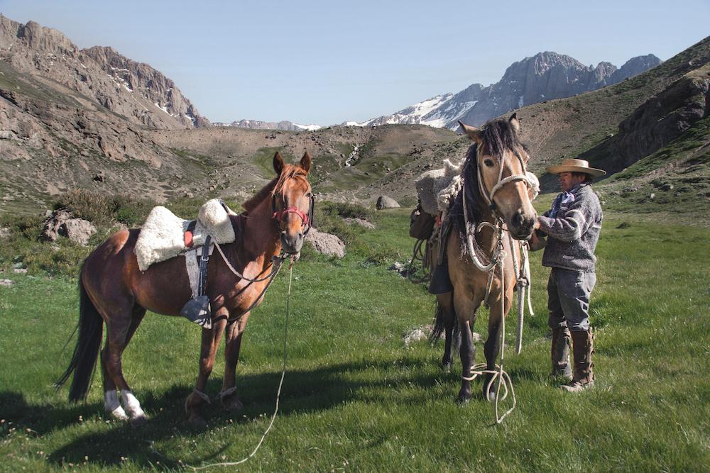 Horse Trekking in Chile