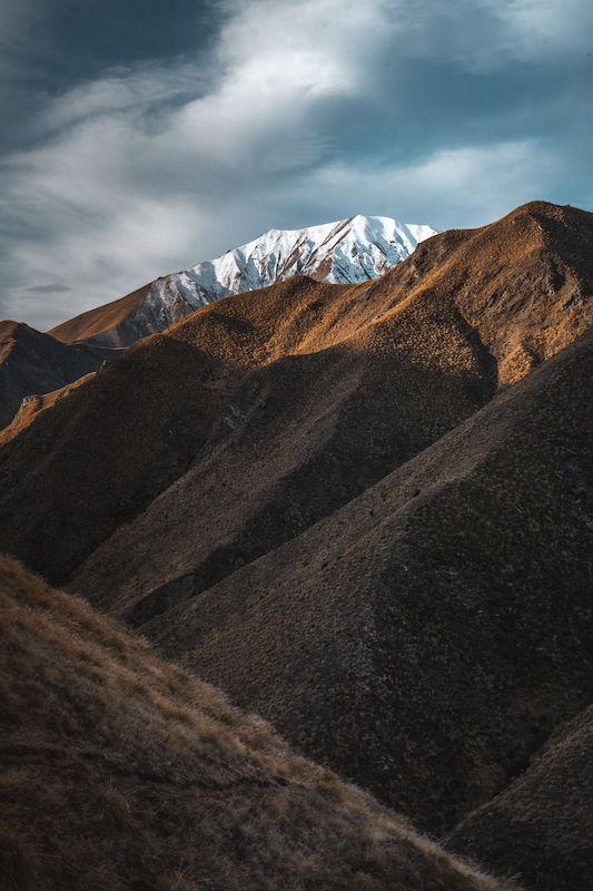 Tussock Covered Mountains