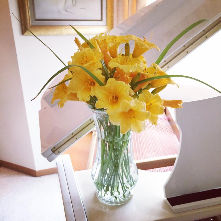 Brighten the day with daylillies.jpg