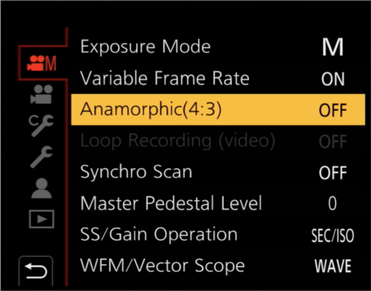 The first page has Anamorphic (4:3) option. Second page has anamorphic desqueeze option (for monitoring desqueezed footage).