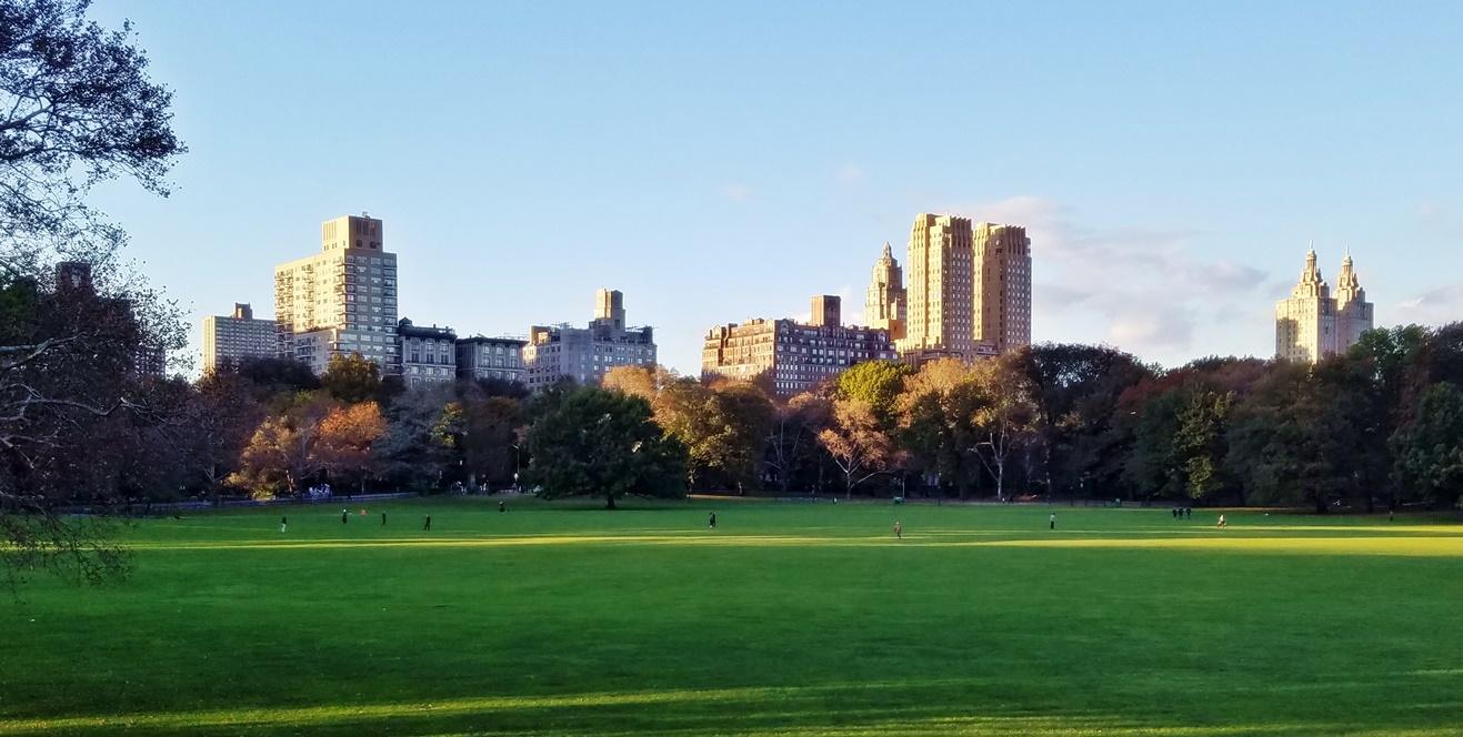 New York City Paleo Restaurant Guide
