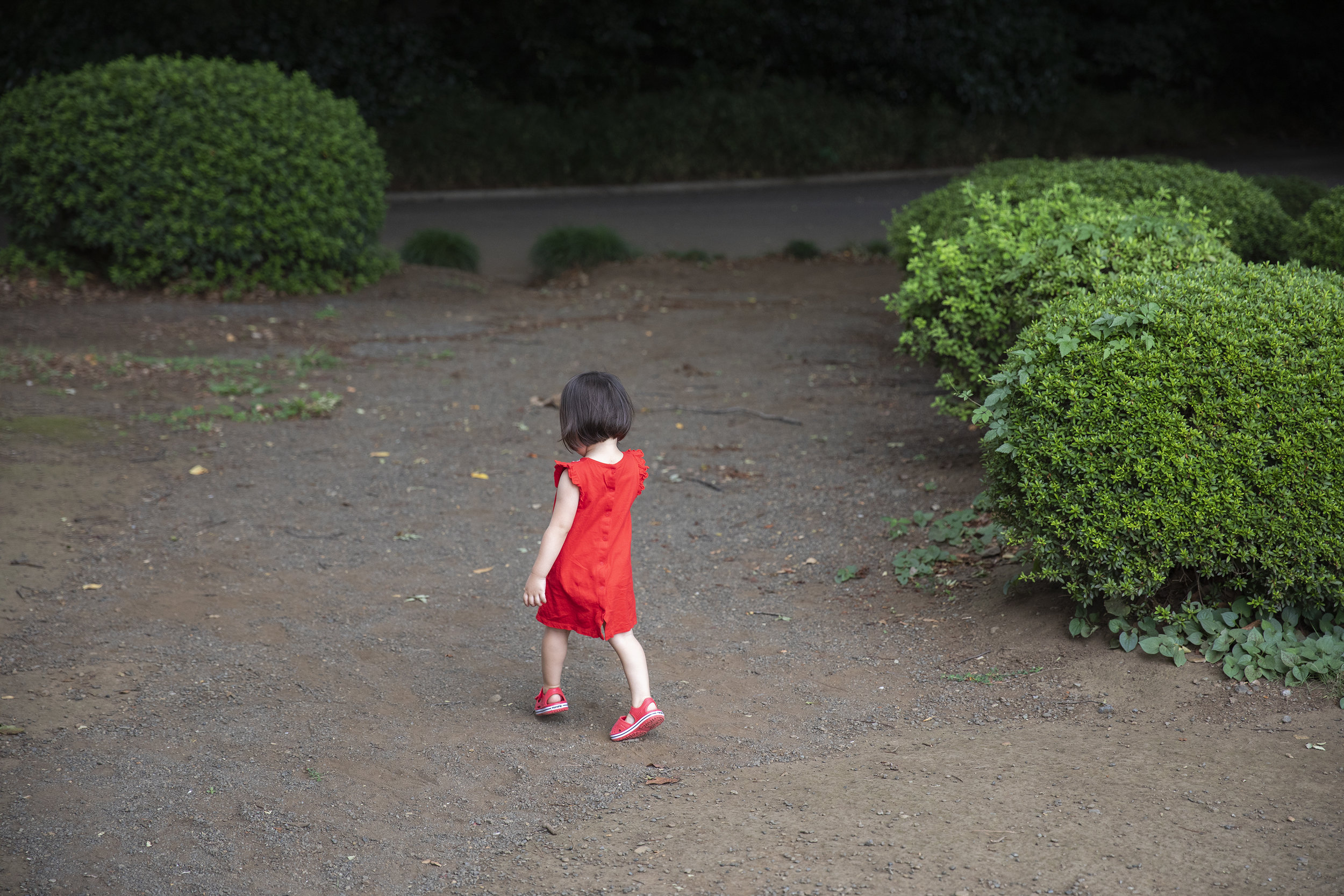 toddler1a.jpg
