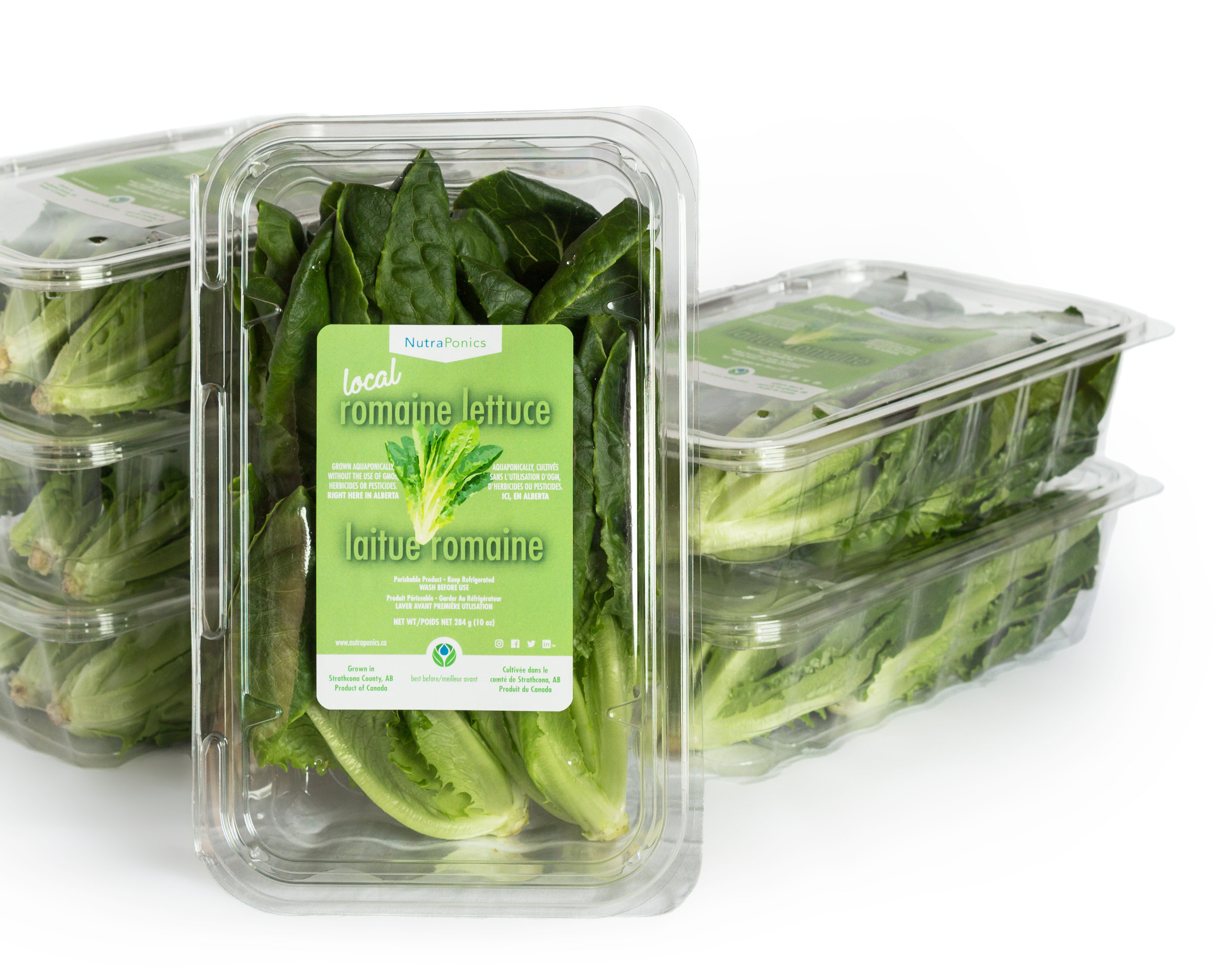 romaine lettuce - Romaine lettuce is rich in Vitamins A, C, and K. The vitamins, minerals, phytonutrients, and fibre found in romaine lettuce are wonderful reasons to start eating more of it! Our romaine lettuce makes that easy with its sweet deep flavours and satisfying crunch!