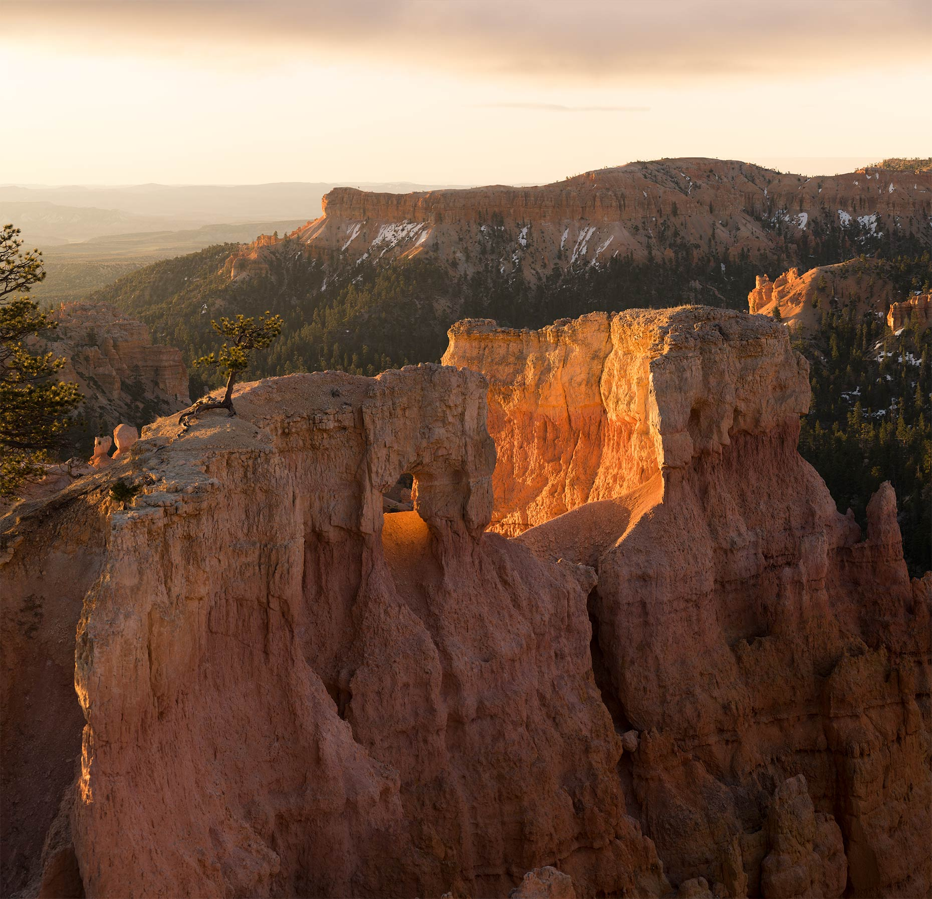 Lane_Peters_Multimedia_Bryce-Canyon2.jpg
