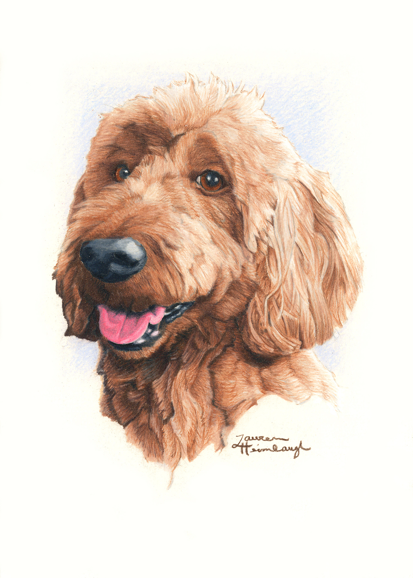 Rosie the Goldendoodle (2016)