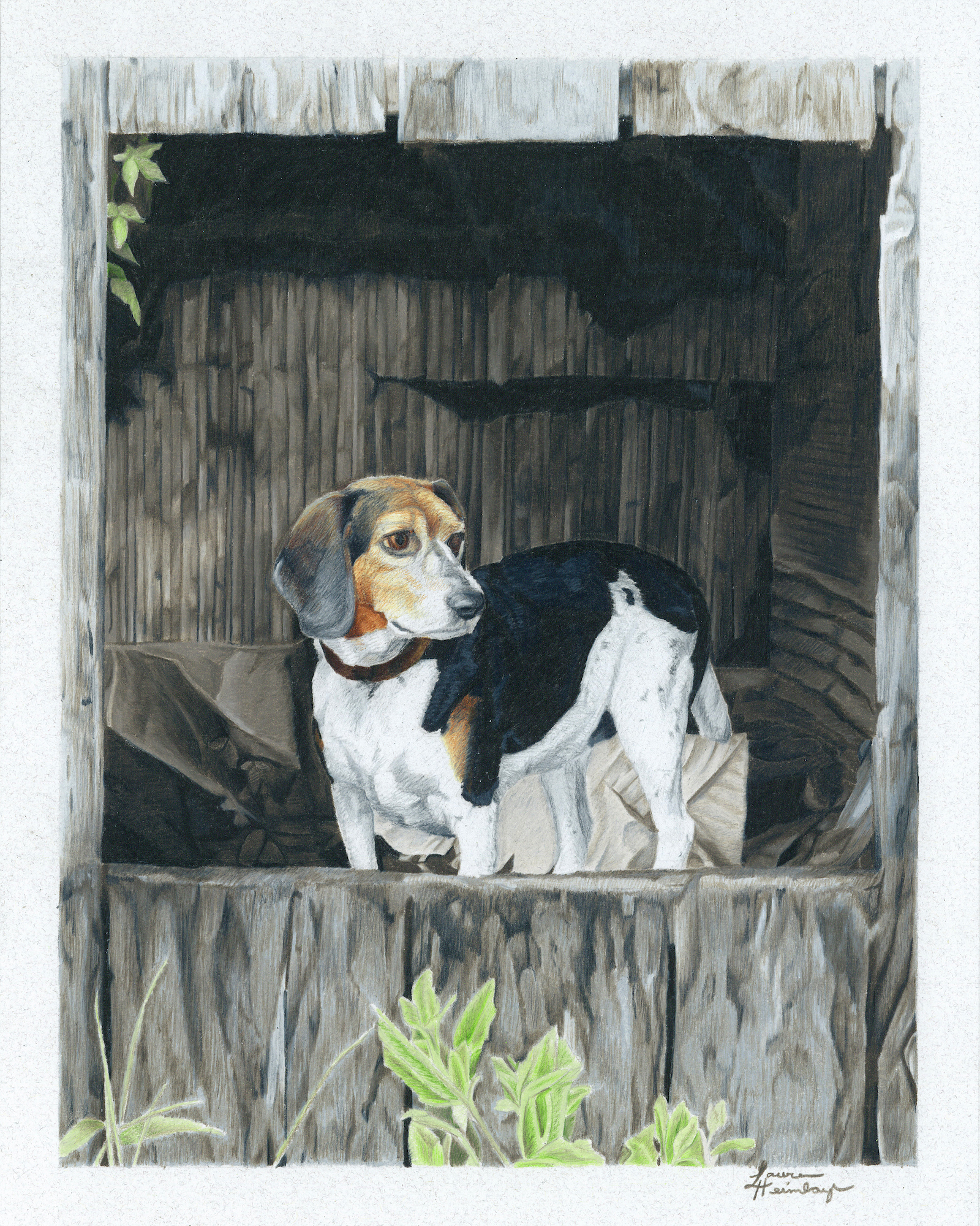Riley the Beagle (2015)