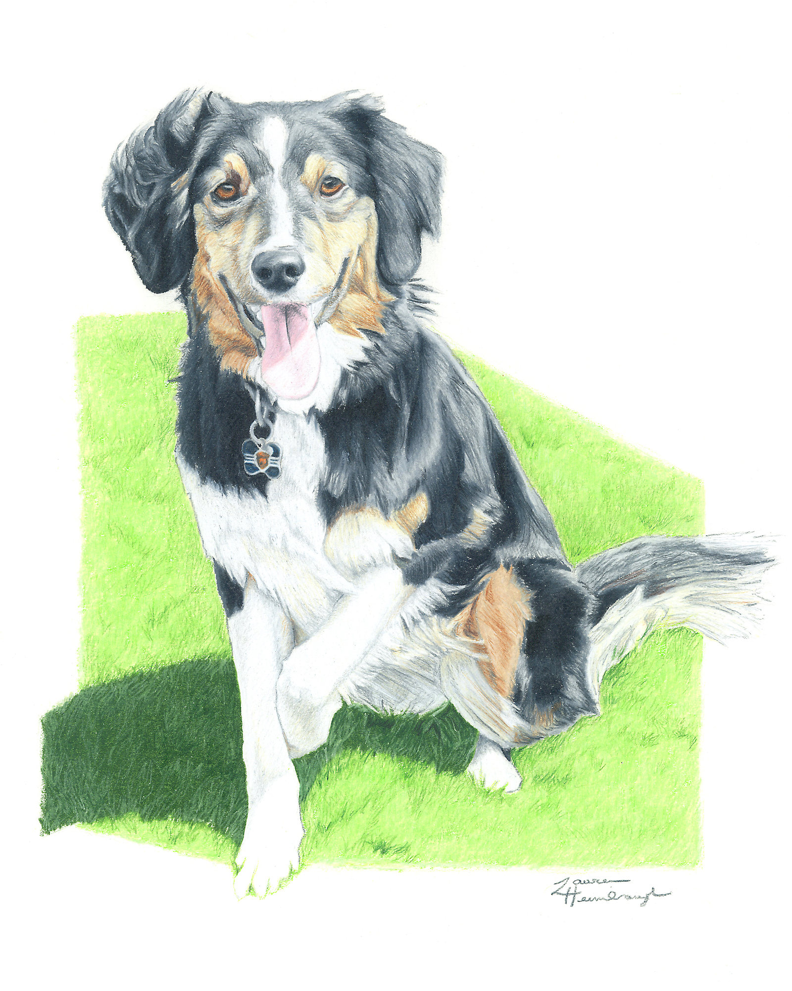 Sherly the English Shepherd (2015)