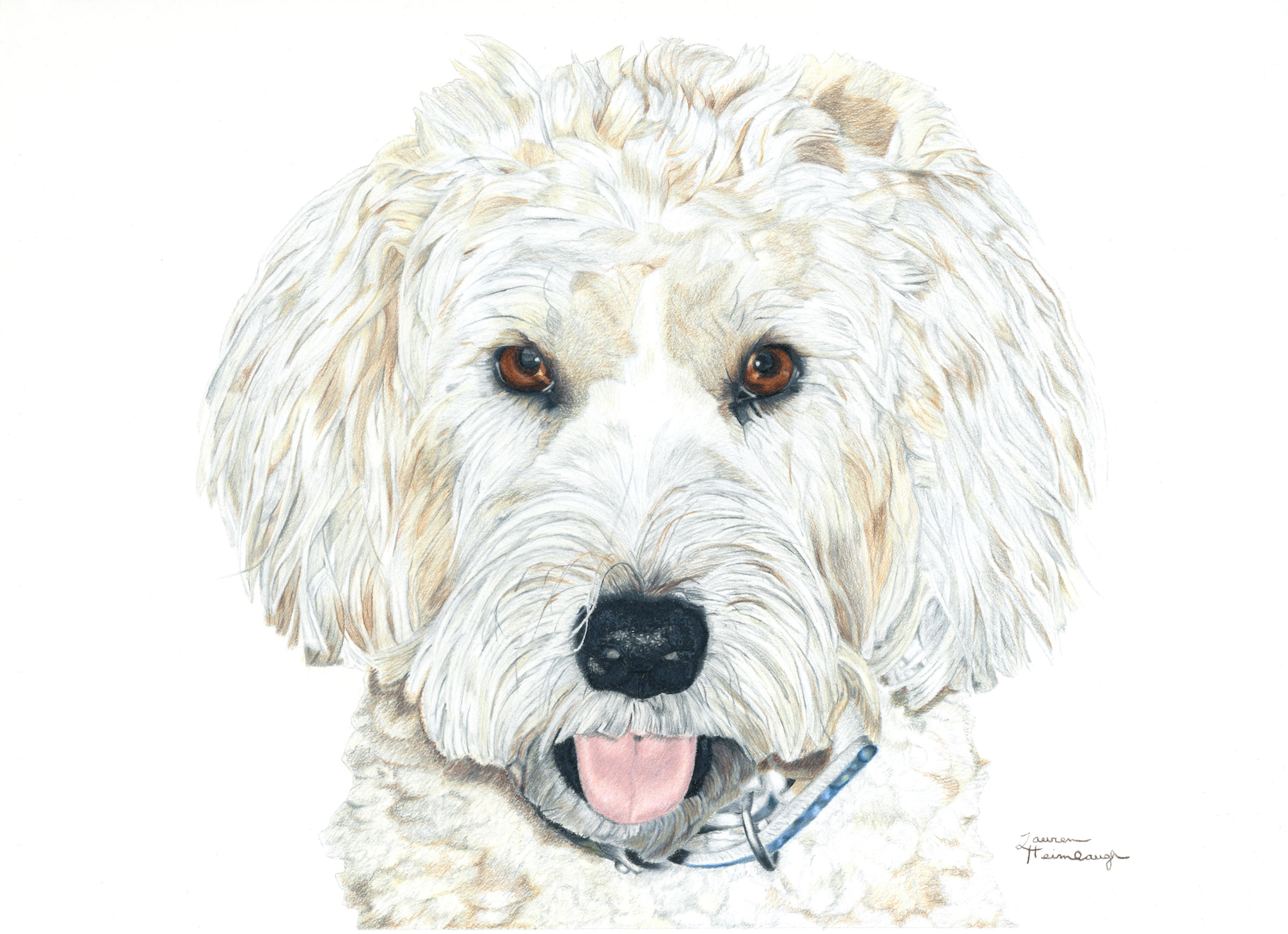 Carmela the Soft-Coated Wheaten Terrier (2013)