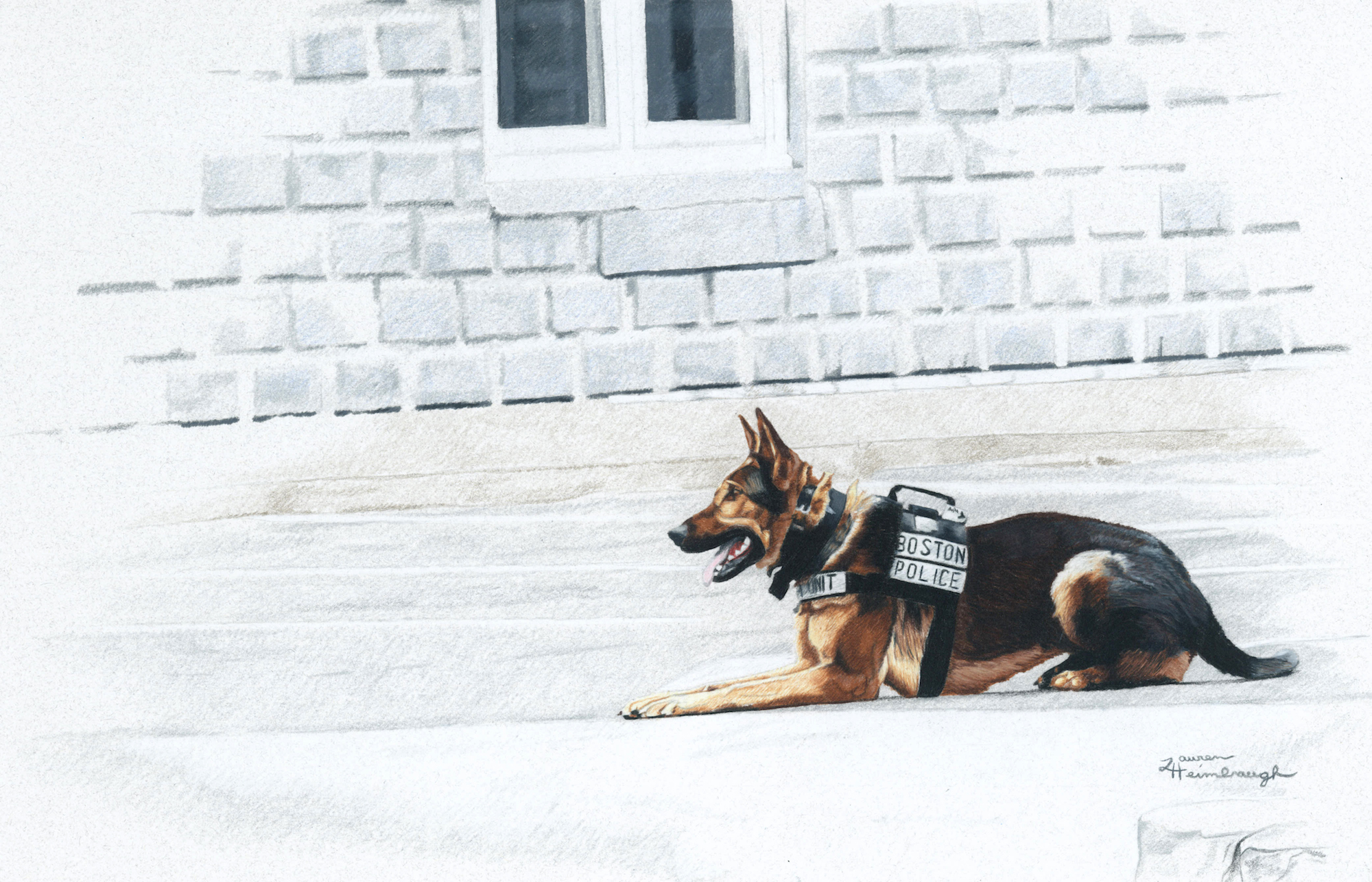 Boston PD K9 Bushido the German Shepherd (2013)