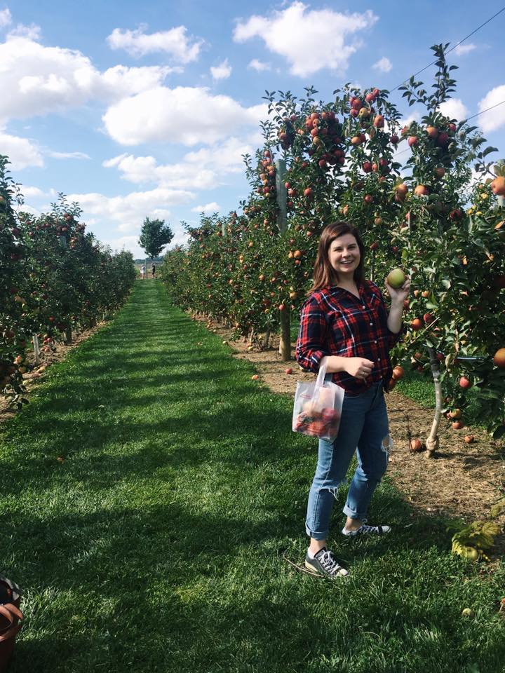 Apple picking at Grim's!