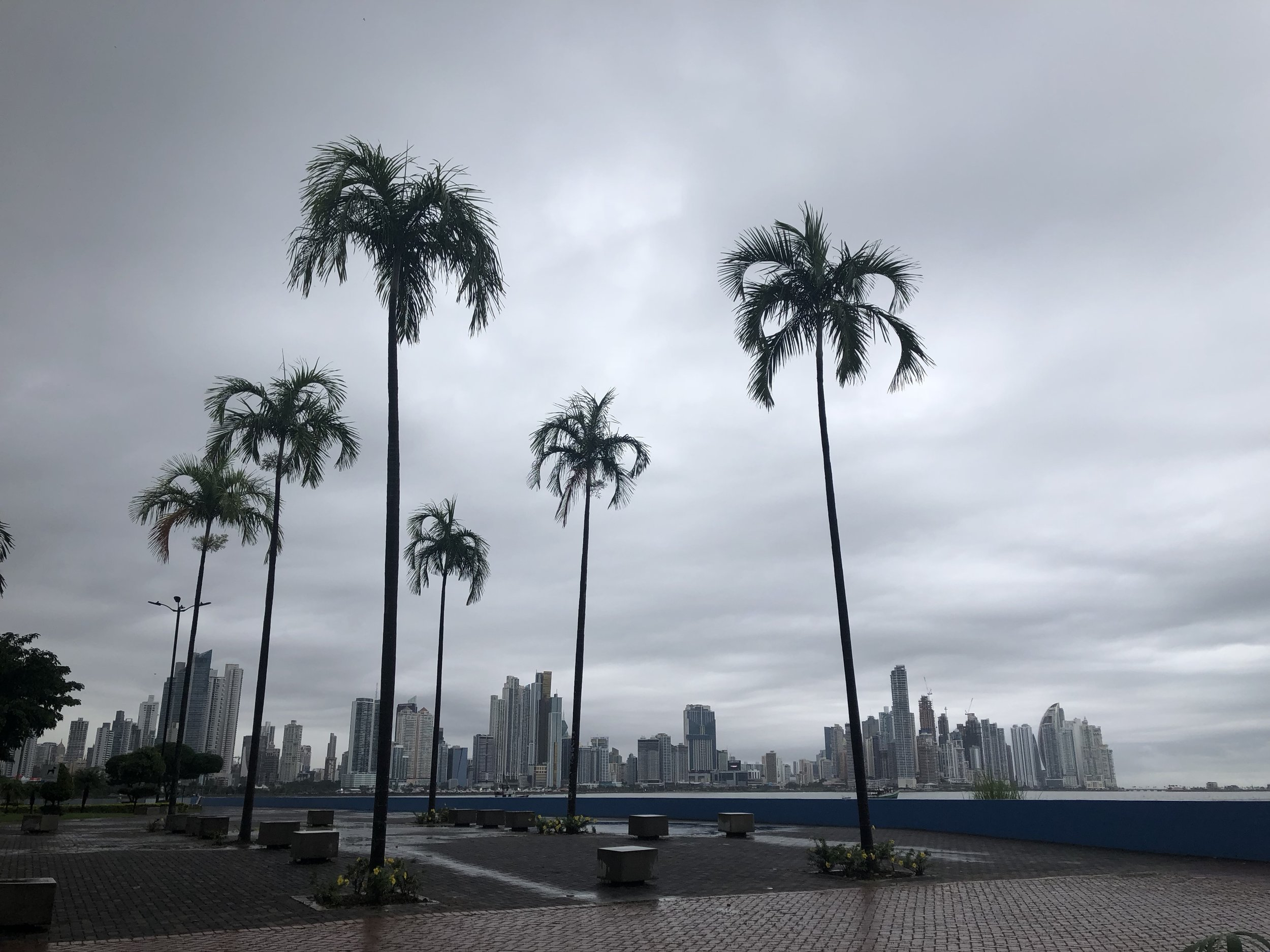 View of the city on our walk from Casco Viejo to the fish market