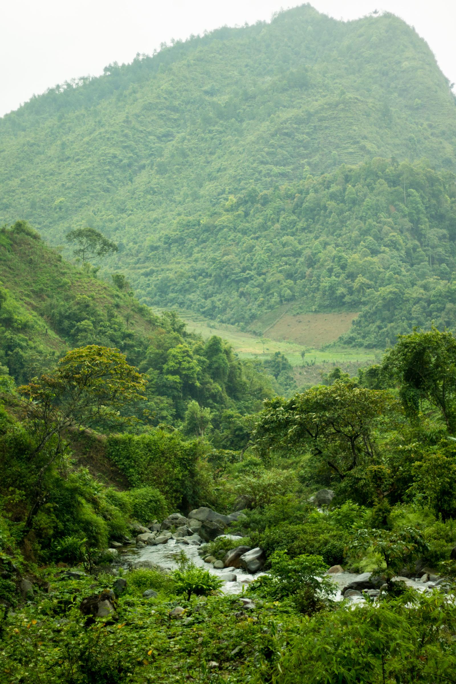 - Vietnam (North Region)