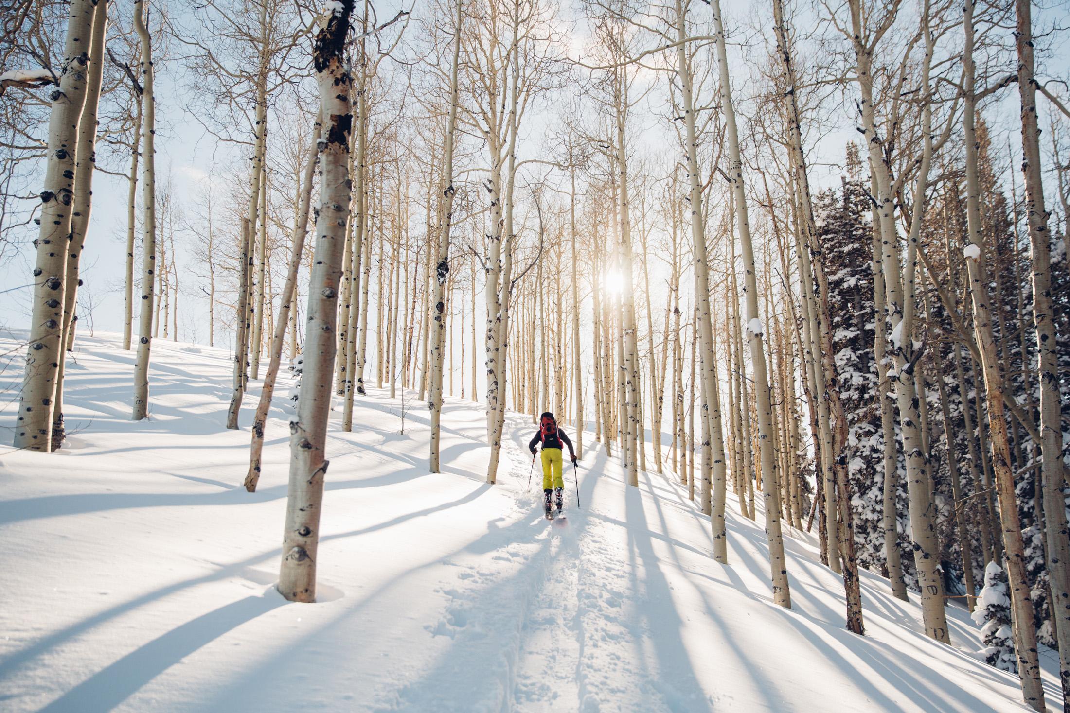 josh-donlan-backcountry-skiing-midway-utah-aspens-wide.jpg