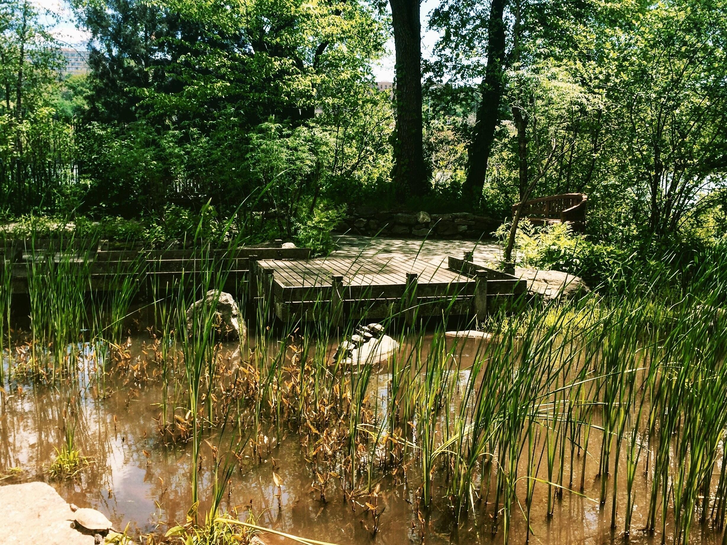 Sherman Creek