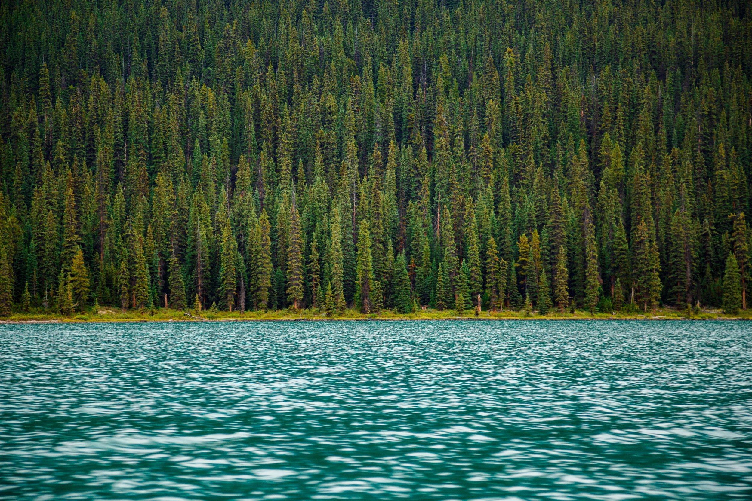 lakes-near-lynchburg-va