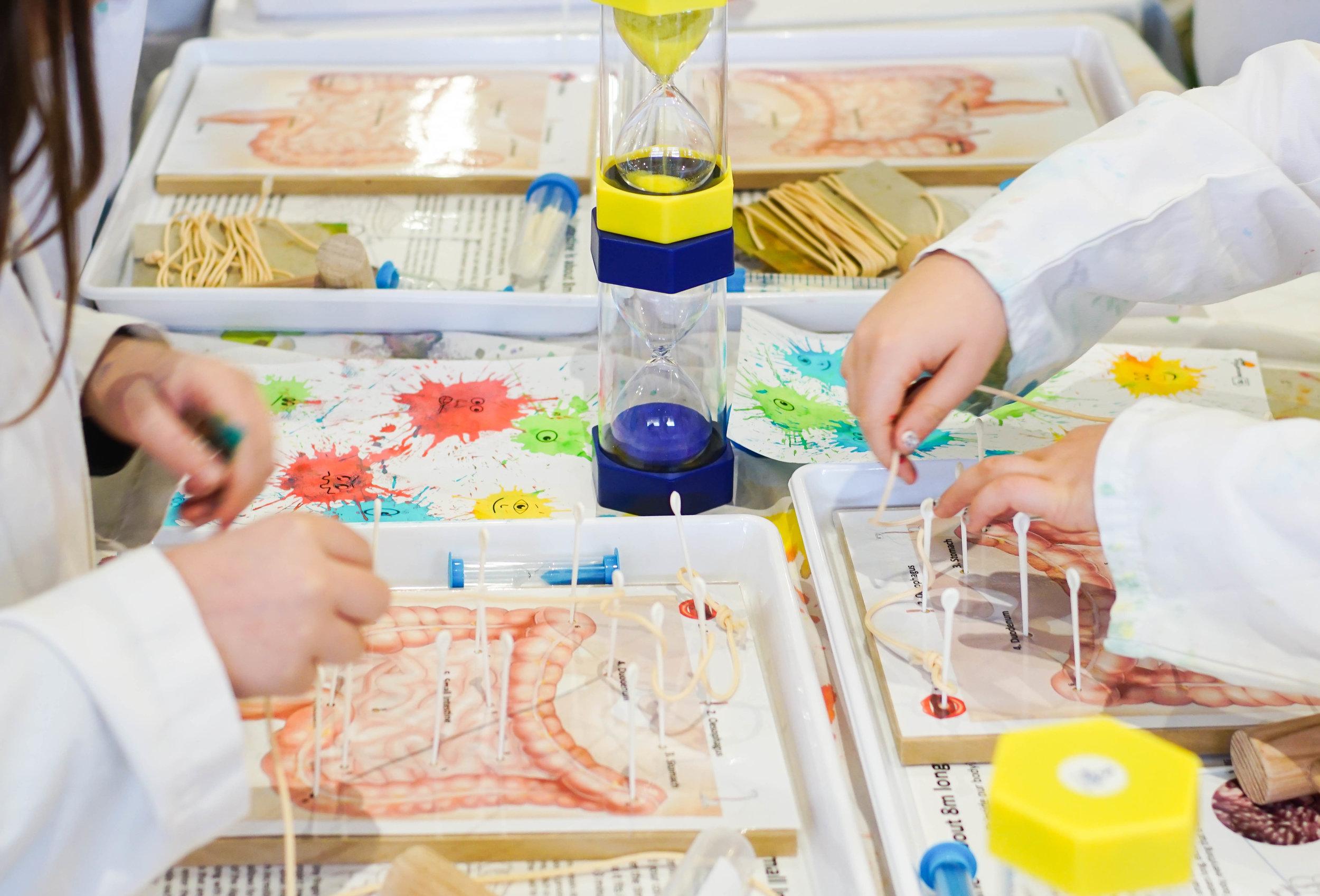 SciencePlay Kids - Little Life Lab Woodgrove Melton - 1-1.jpg