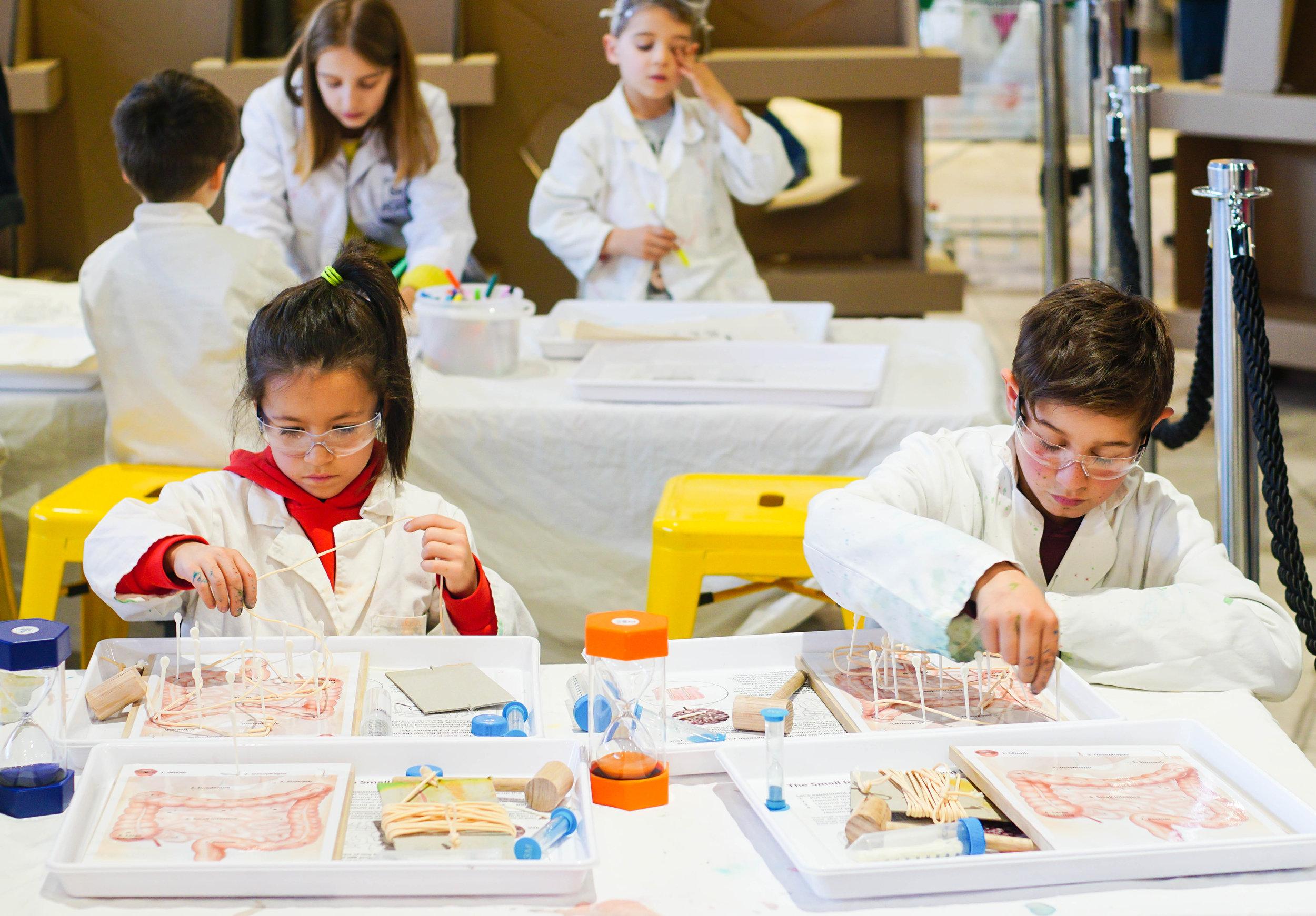 SciencePlay Kids - Little Life Lab Woodgrove Melton - 10-2.jpg