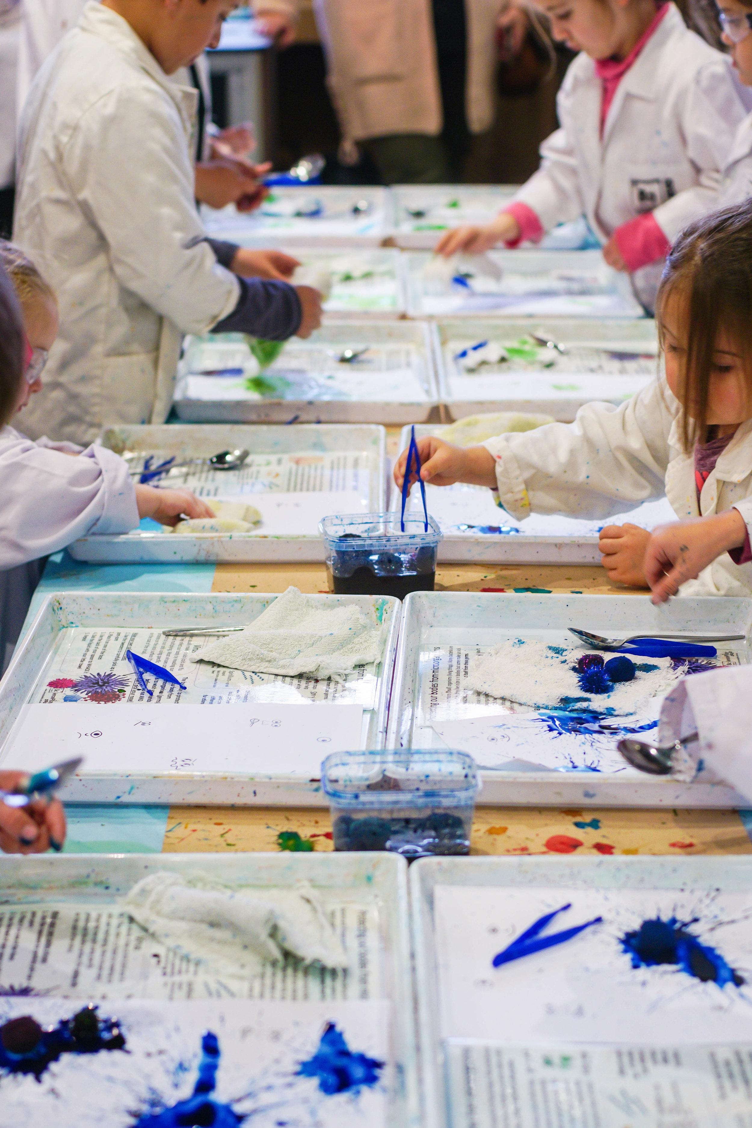 SciencePlay Kids - Little Life Lab Woodgrove Melton - 18 (1)-15.jpg