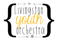 Brighton, Michigan  Youth Orchestra. Meets Monday evenings at 242 Community Church.  Open to intermediate level string students.