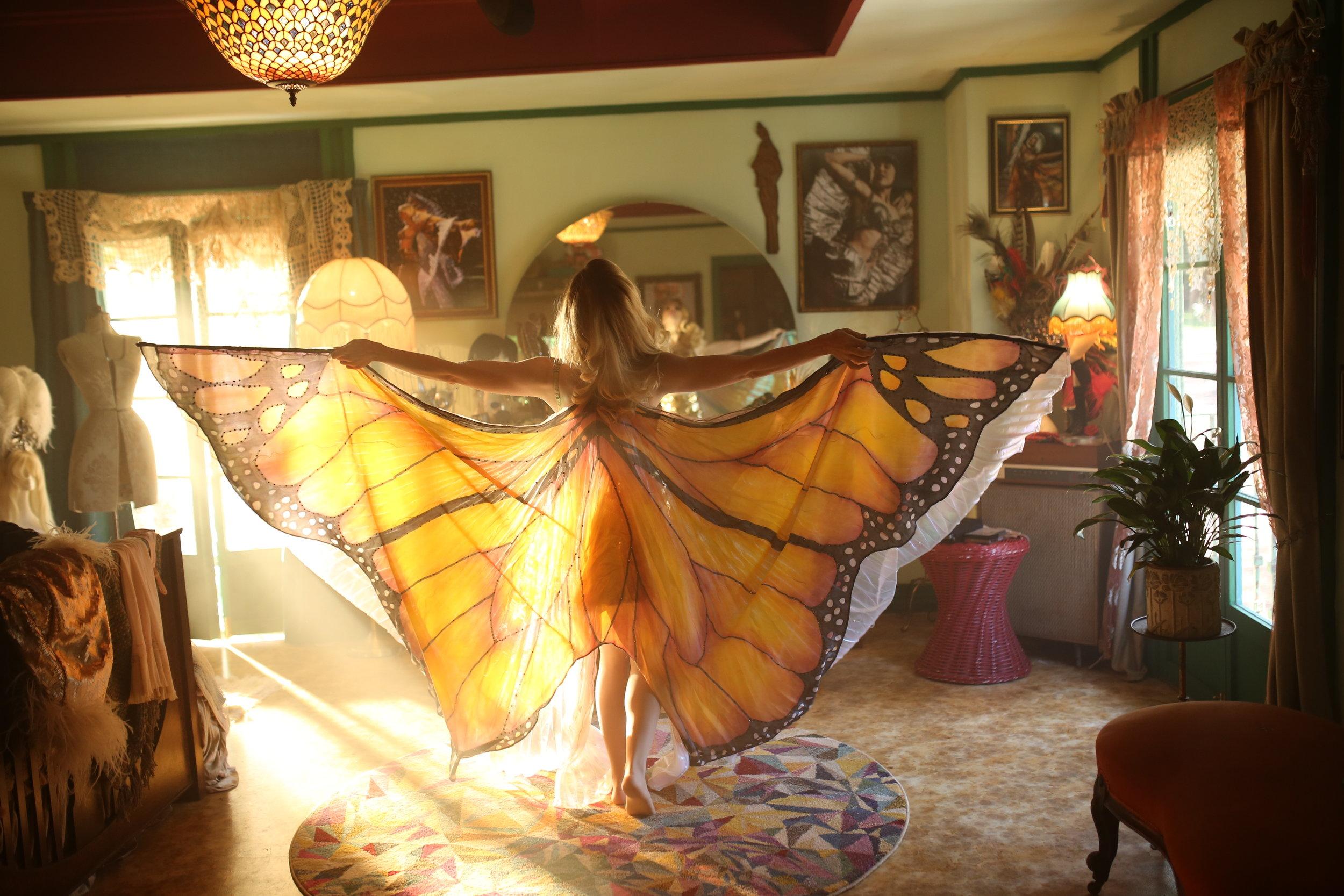 The Butterfly Tree_1H8A2754_By Matt Hart.JPG