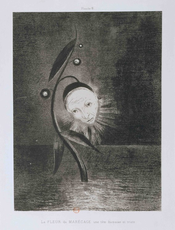The Marsh Flower, A Sad and Human Head,  1885, Odilon Redon (1840-1916)