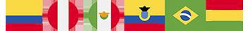 BANDERAS+HINODE+INTERNACIONAL.png