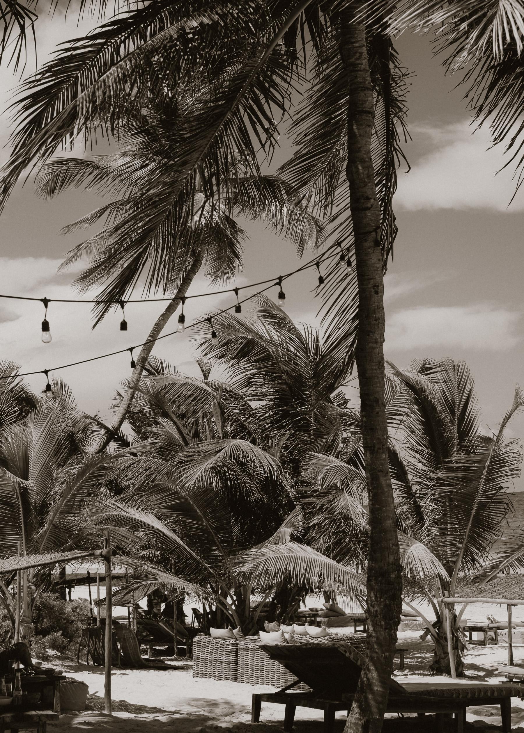 Calming beach scenes.