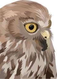 Geometric Owl by Darkest Raven Designs