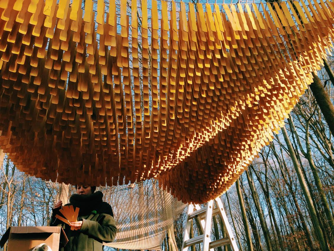 An installation created by Lauren for the Open Air Art Museum in Holmes County. With help from Britni Cartier,  14,000 hand-dyed paint stirrers were suspended from the trees over a hiking trail in November 2016.