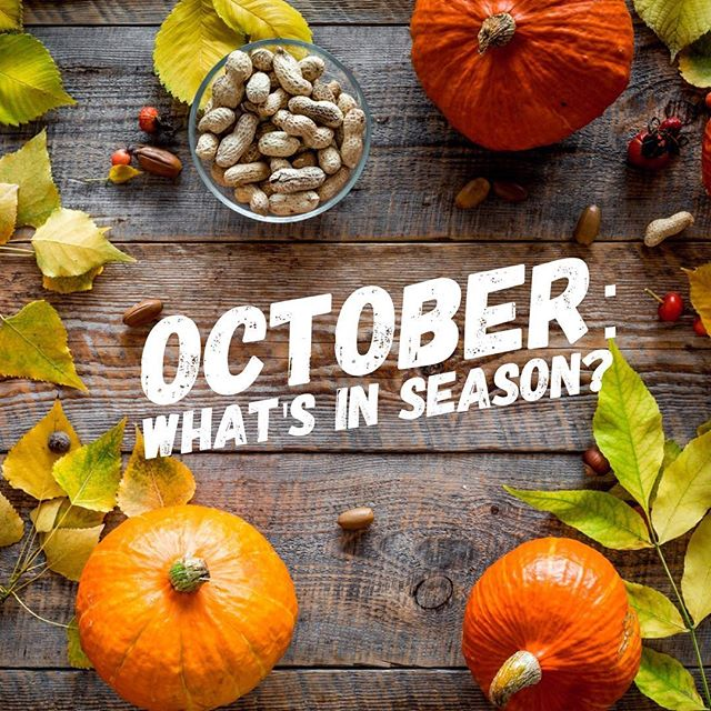 October is fast approaching - what's delights will it bring? Check out the latest blog on our website that will tell you exactly what produce you can look forward to enjoying. . . Link to blog in our bio. . . #whatsinseason #seasonalproduce #october #goodfood #delicious #onepotmeal #onepotdish #soup #stew #curry