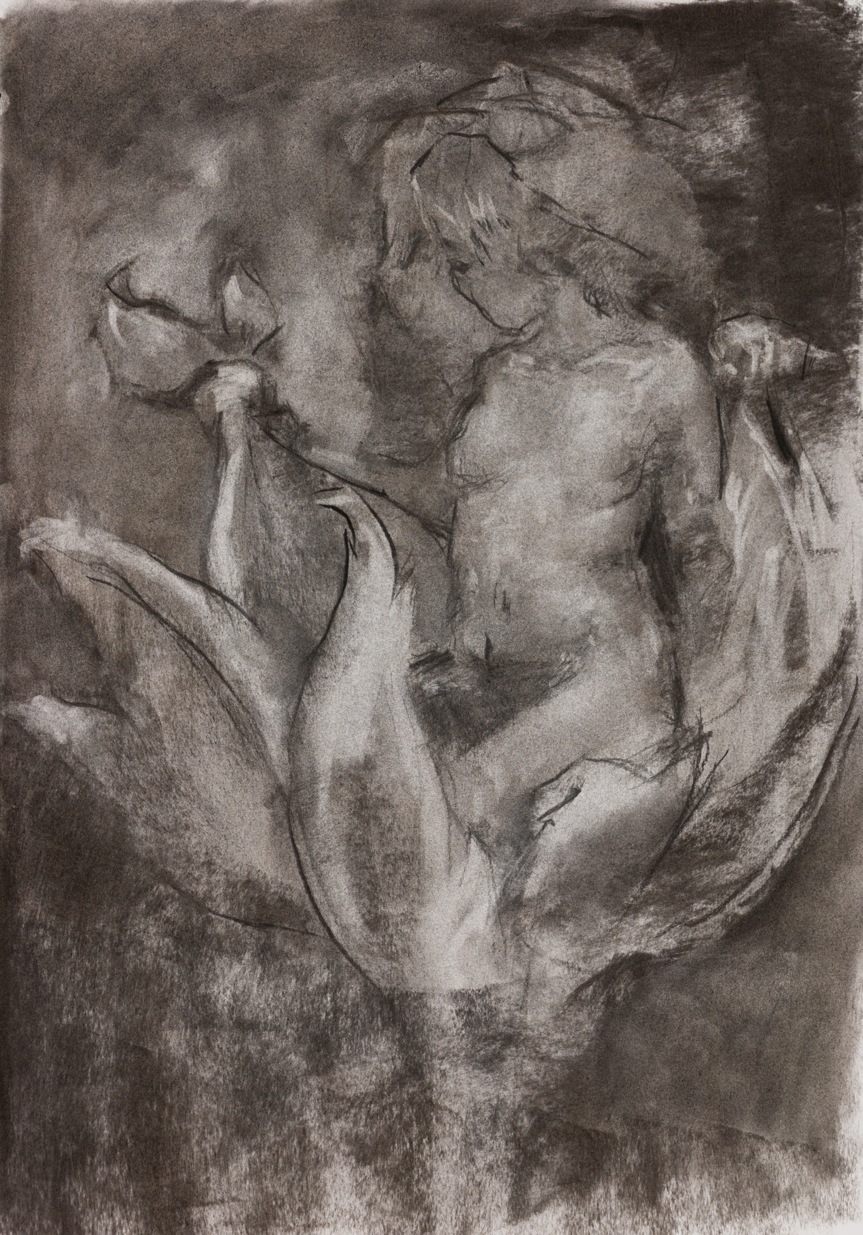 """Series :  Media : Charcoal on Paper  Size : 15"""" by 22""""  Date : Sep 2018  PURCHASE PRINT (coming soon)"""