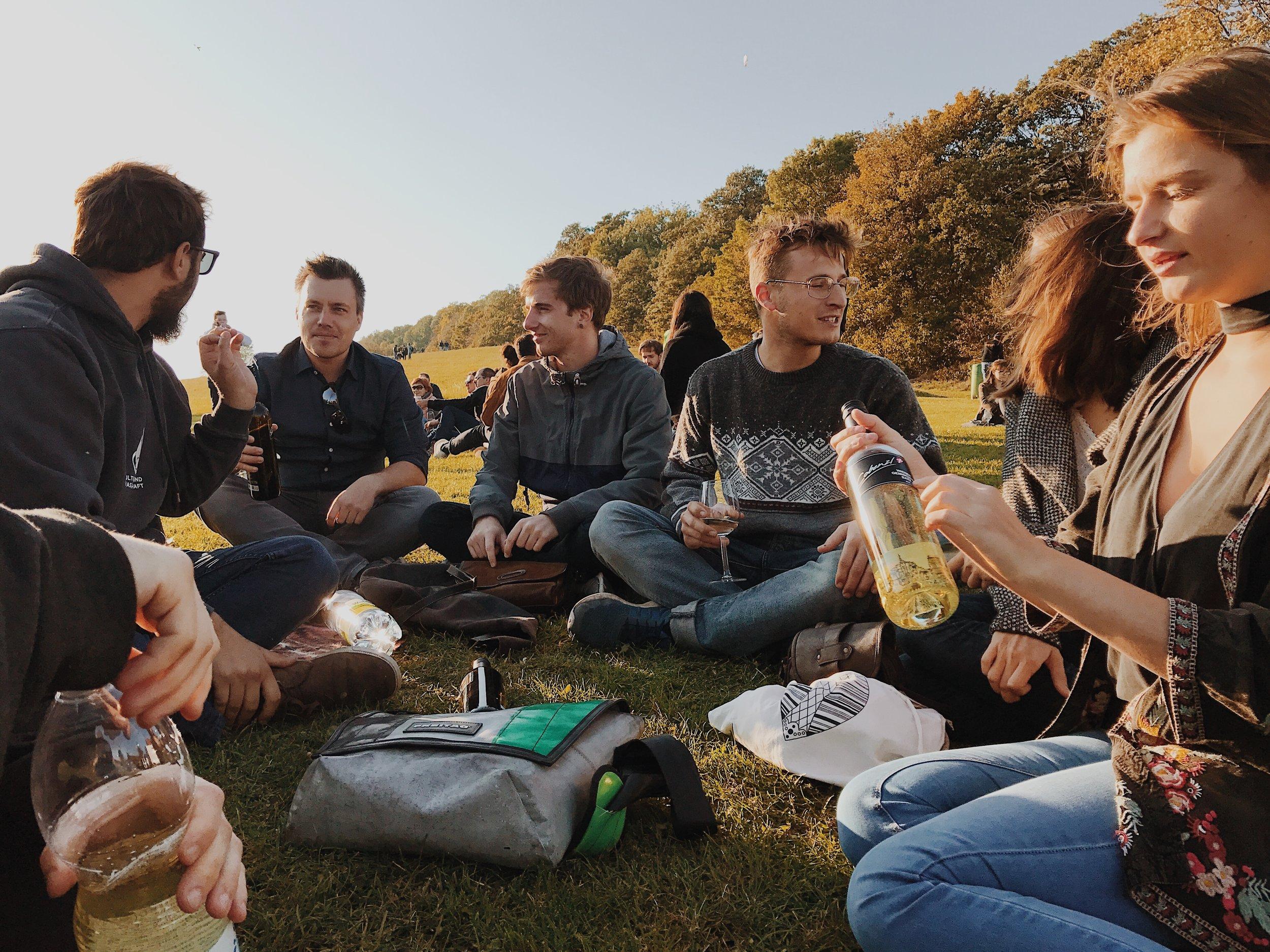 Vineyards, Vino, and Vienna friends