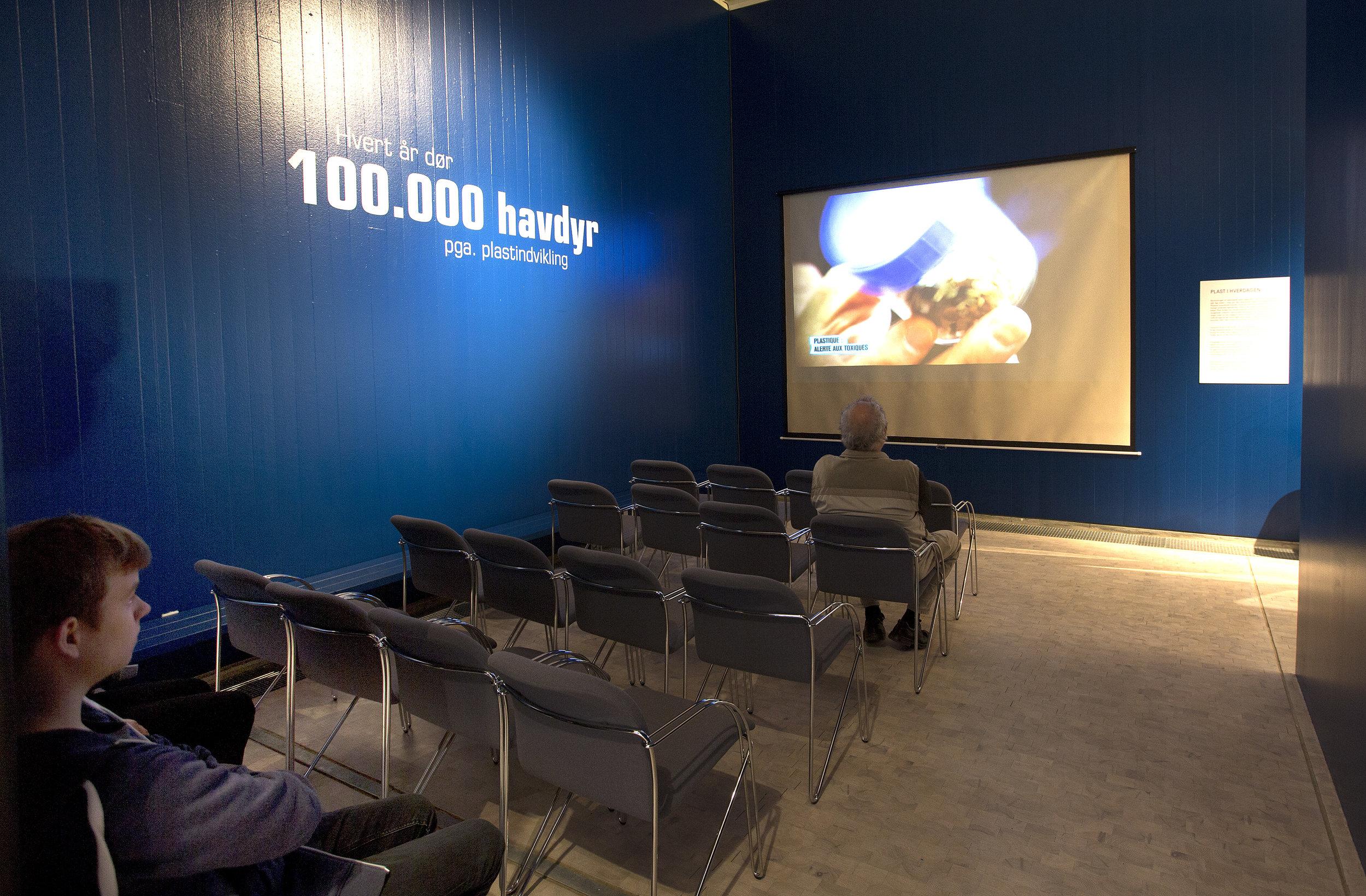10. Cinema area.jpg