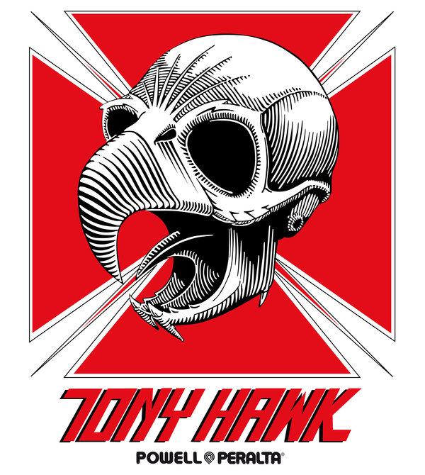 tony_hawk_by_sergiotoribio-d34j23p.jpg