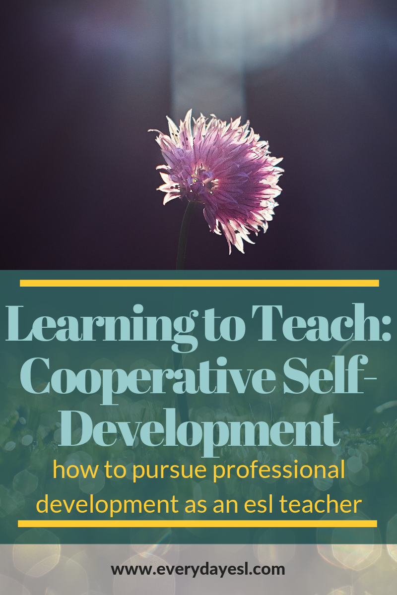 The Importance of Cooperative Self-Development: Professional Development for the ESL Teacher | Everyday ESL | Adult ESL | Teaching English | How to Teach ESL | Professional Development