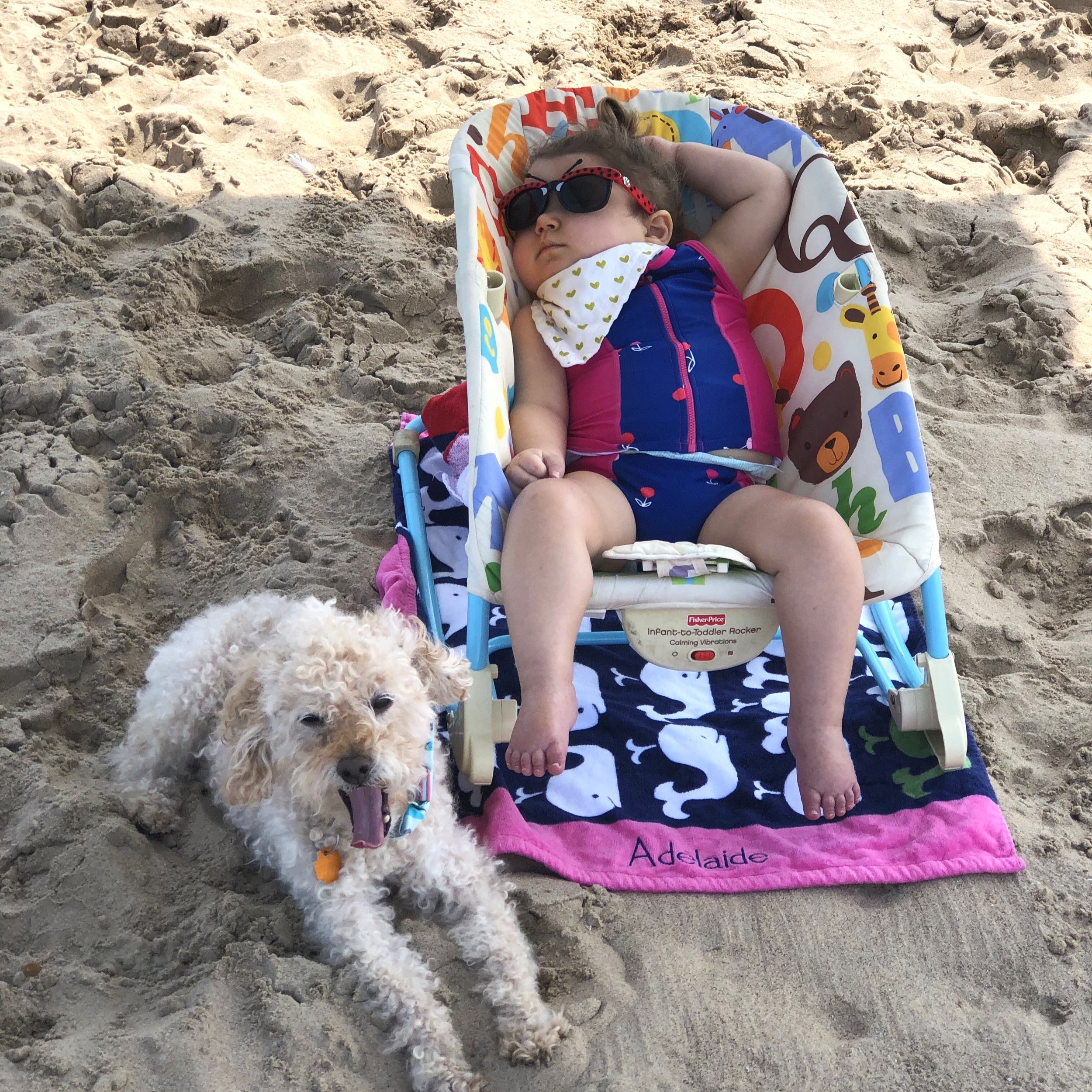 A bug on the beach with her dog… before oxygen was a daily accessory, August, 2018