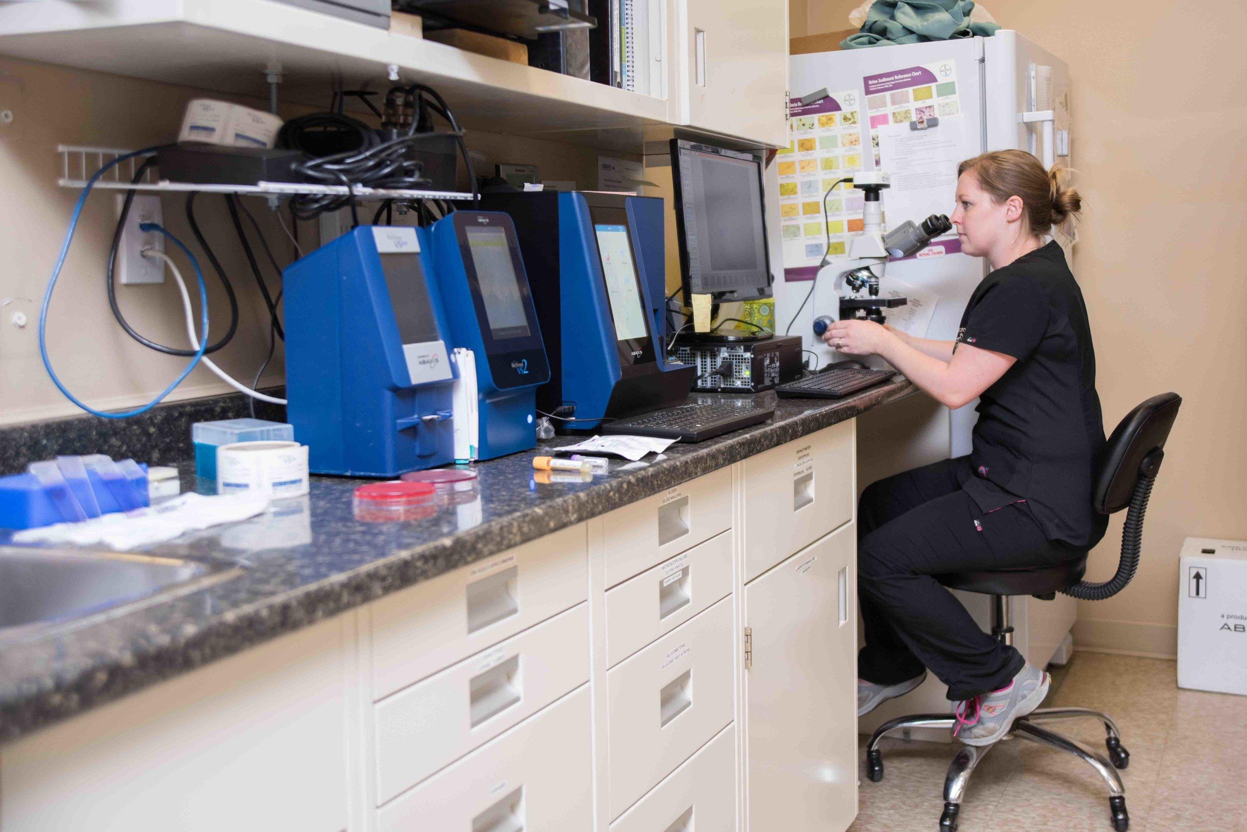 Prescott-Animal_Hospital-laboratory.jpg