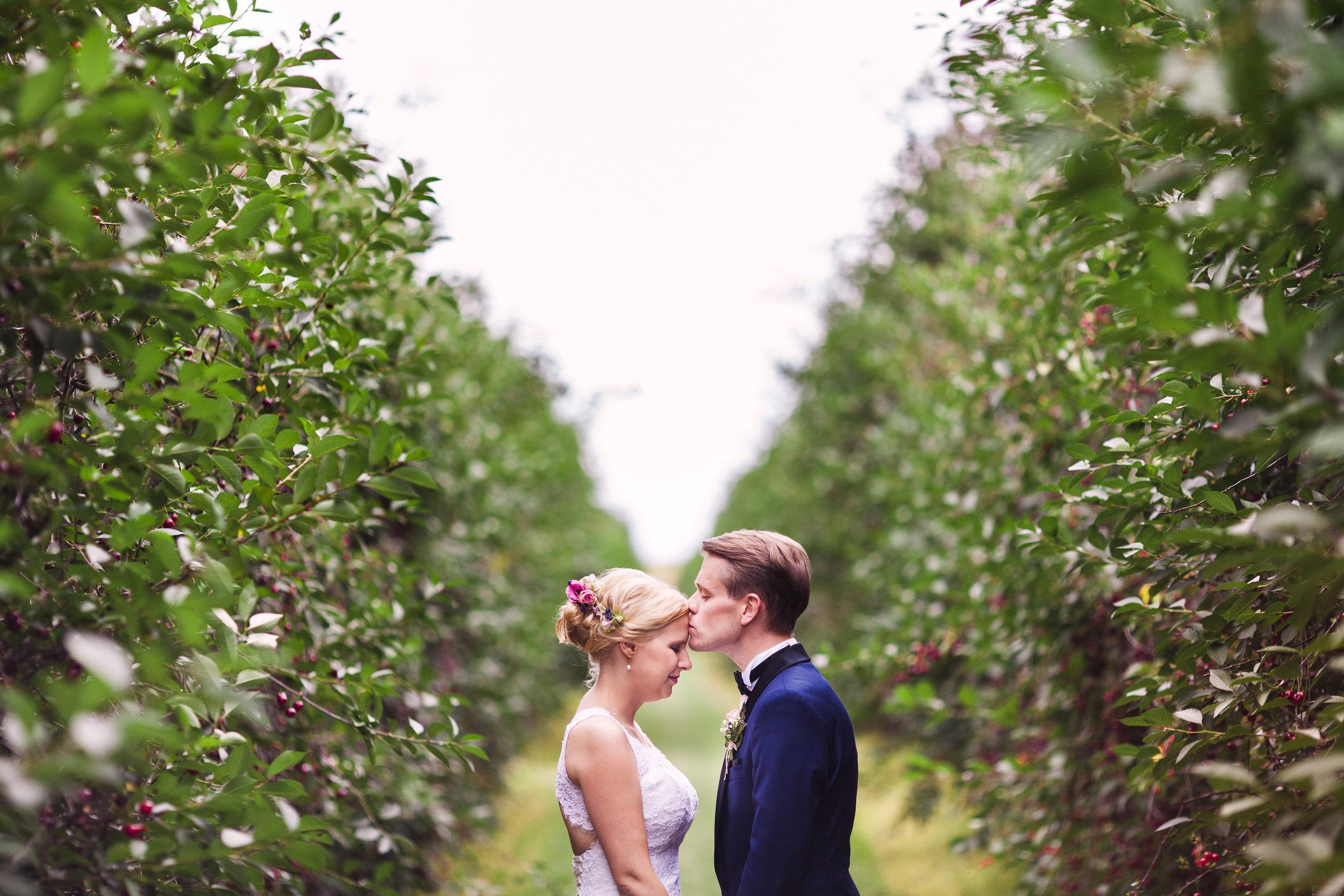Hochzeitsfotos in Querfurt