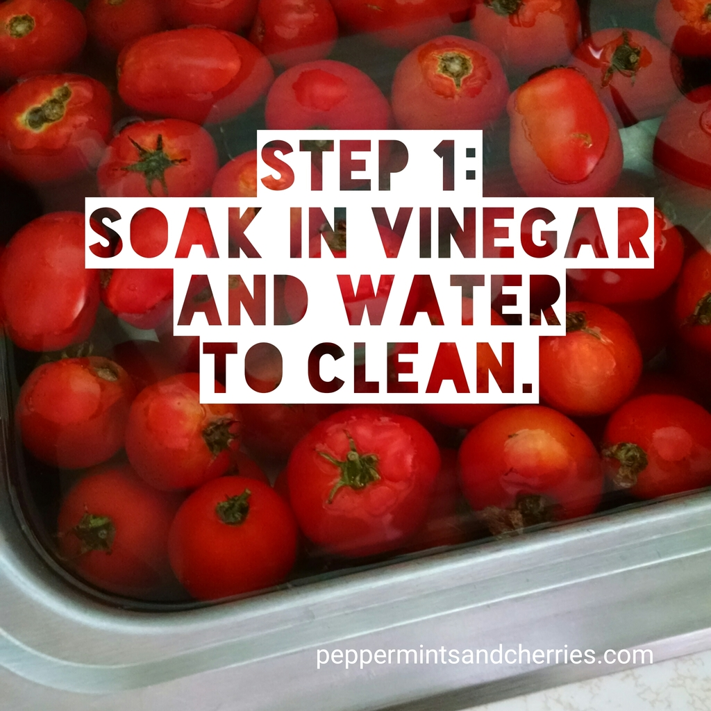 Step 1 for Freezing Tomatoes