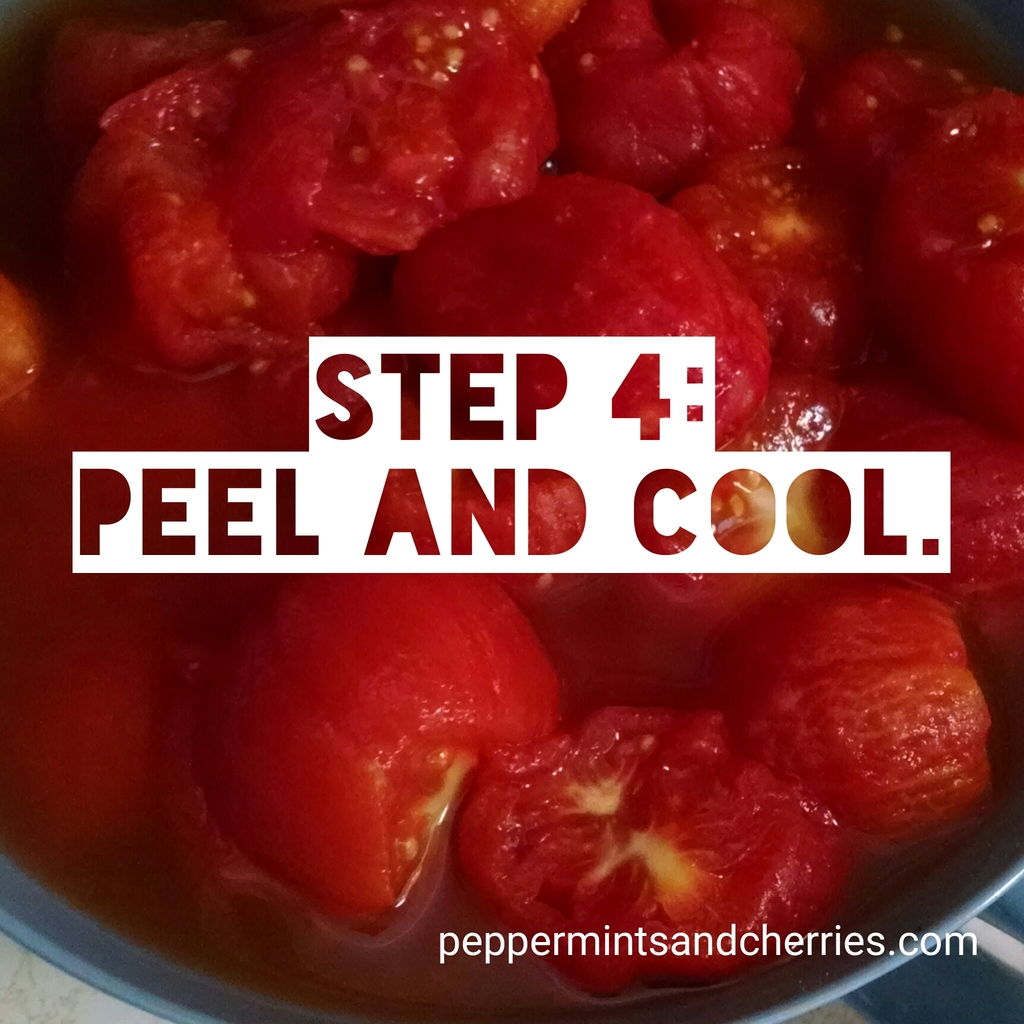 Step 4 for Freezing Tomatoes