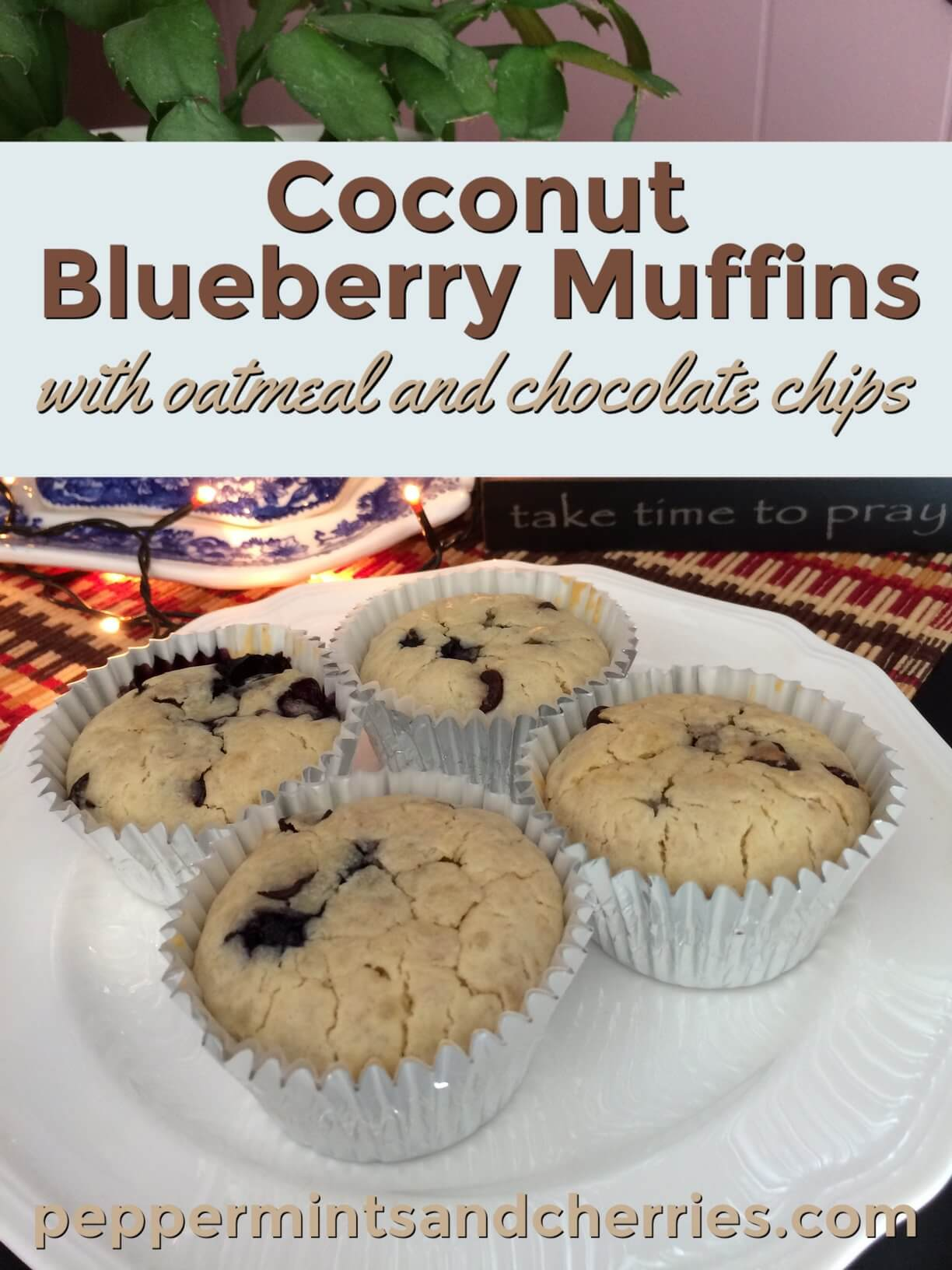 Coconut Blueberry Muffins with Oatmeal and Chocolate Chips