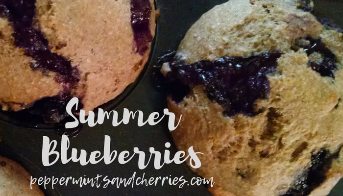Blueberry Bread and Muffins Recipes