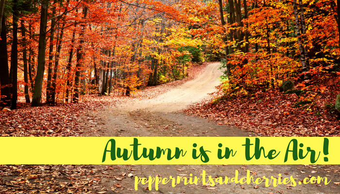 Autumn is in the Air!
