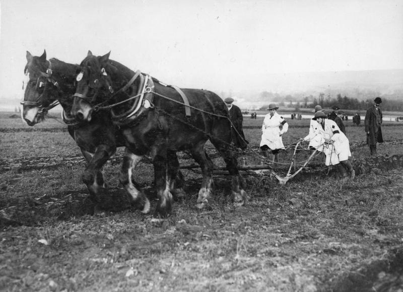 Members of the Women's Land Army operate a horse-drawn plough during World War One